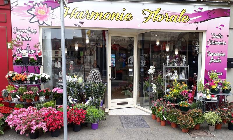 L'attribut alt de cette image est vide, son nom de fichier est Harmonie-florale.jpg.